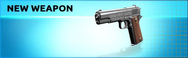 A New Pistol in the Shop!